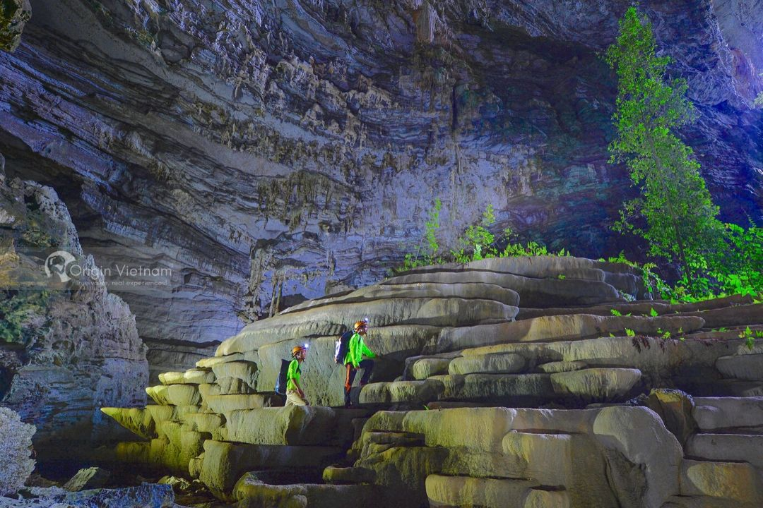 Full Day Phong Nha NP Trekking Jungle And Wildlife